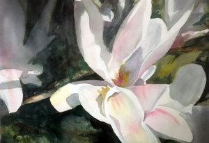 Magnolia III Anke Gruss Malerei Aquarell auf Papier