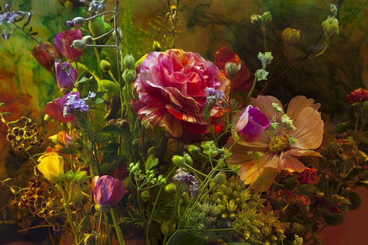 The Enchanted Rose Javiera Estrada Photographie Digital Sur Papier
