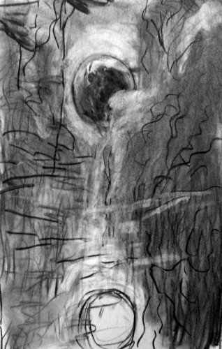 Luna 2 Russell Gilder Drawing Charcoal on Paper