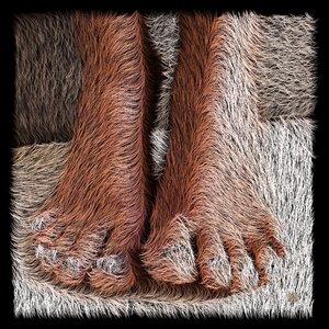 Poils aux pieds (ou les pieds d'Hobbit) Frédéric Durieu & Nathalie Erin Digital  auf Metall