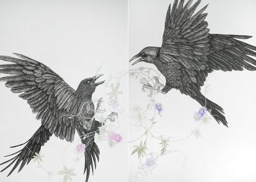 Seelenvögel 2-teilig von Birgit Pleschberger (2018): Zeichnungen ...