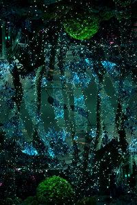Nightgarden # 1 Nabiha & Thom Unity Art Fotografie Digital auf Papier