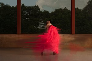 The Song of Red Damian Siqueiros Photographie