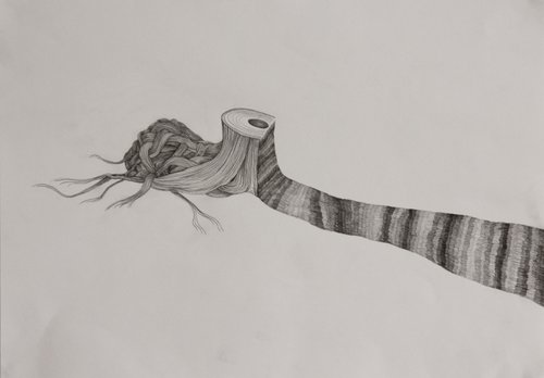 Troncs cheminants extrait #1 Isabelle Vicherat Drawing