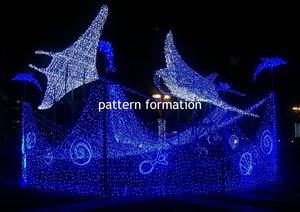 pattern formation Rona Rangsch Fotografie