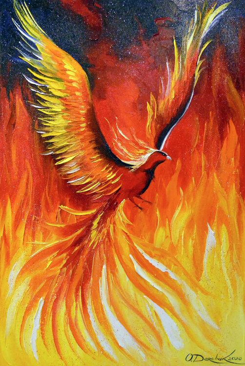 Olha Darchuk Acrylglasbild Phoenix