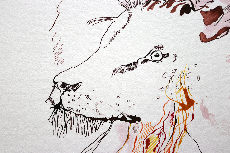 Element Feuer - Die Tierkreiszeichen Widder , Löwe und